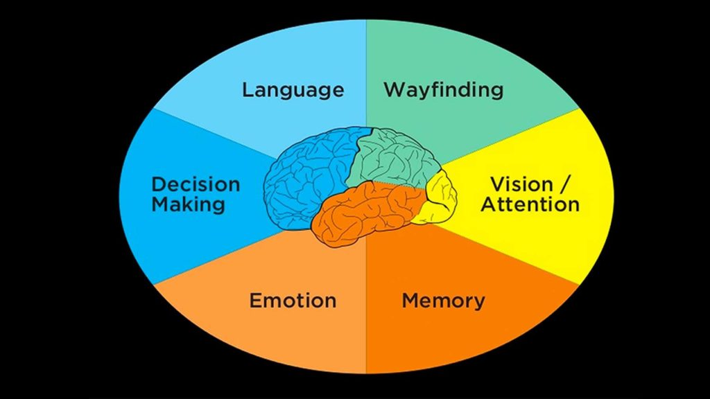 The six minds of UX design